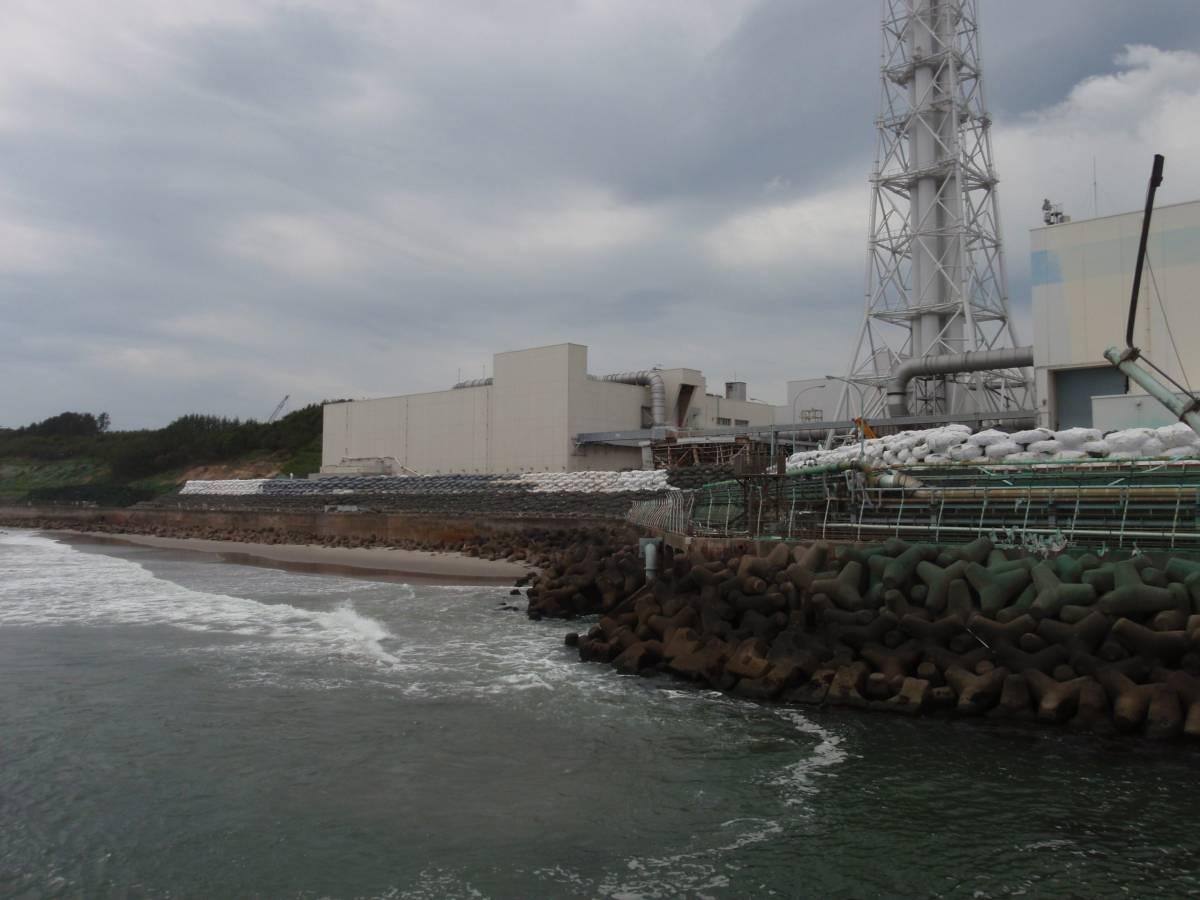 Fukushima, radioattività nel 45% dei bambini