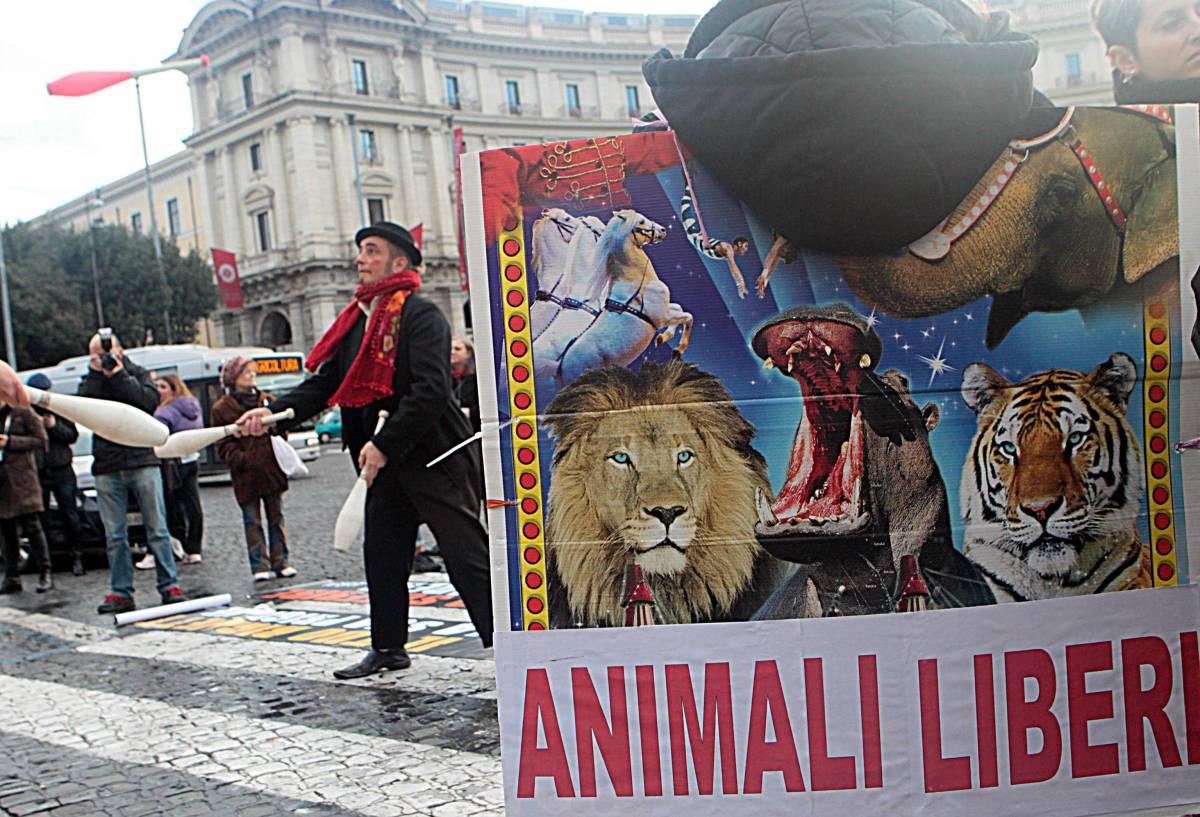 Un momento della manifestazione contro lo sfruttamento degli animali nel circo in piazza della Republica