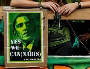 Marijuana, aborto e salari: l'altro voto dei referendum