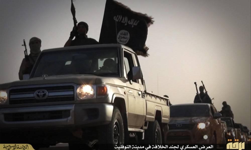Isis, jihadisti vittime di leishmaniosi: 100mila casi accertati