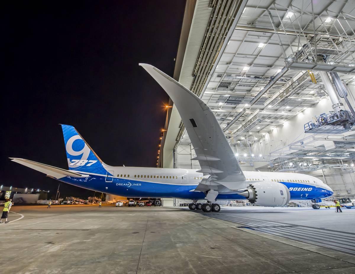 Paura in volo: passeggera cerca di forzare la porta della cabina di pilotaggio