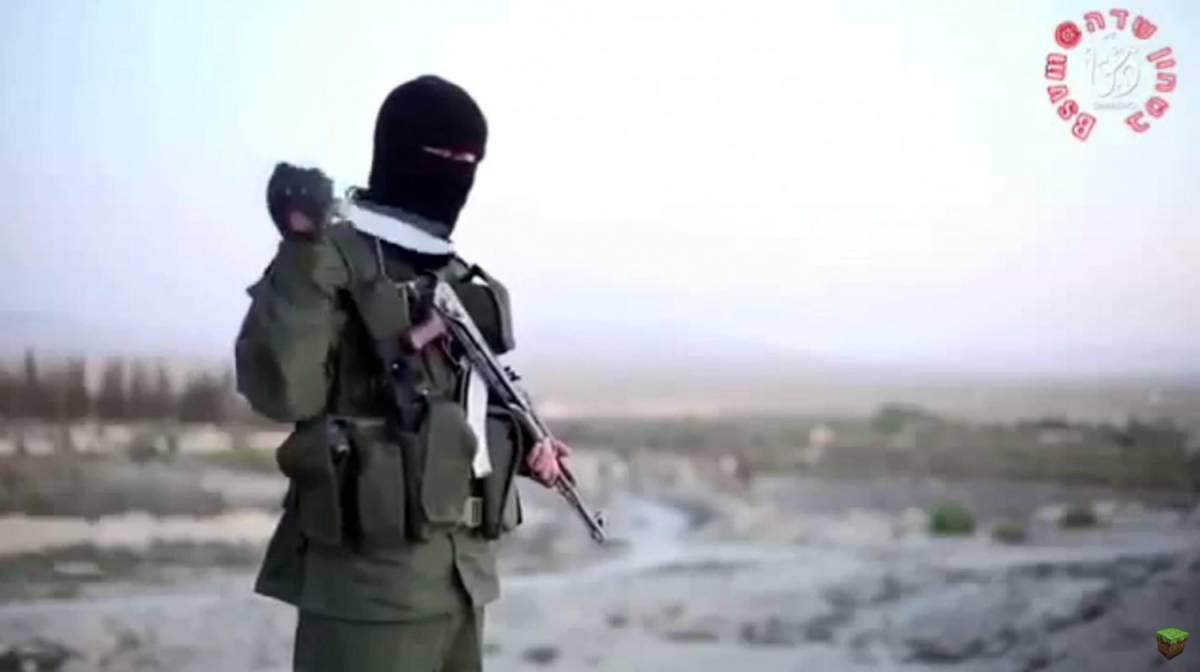 Nuovo attacco del Califfato, hackerati profili Twitter
