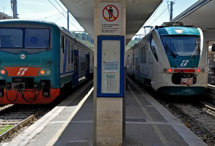 """""""Niente biglietto a una donna"""": africano attacca il controllore del treno"""