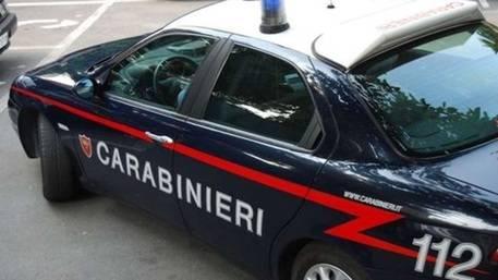 Orrore nel Viterbese: donna uccisa e nascosta in un surgelatore