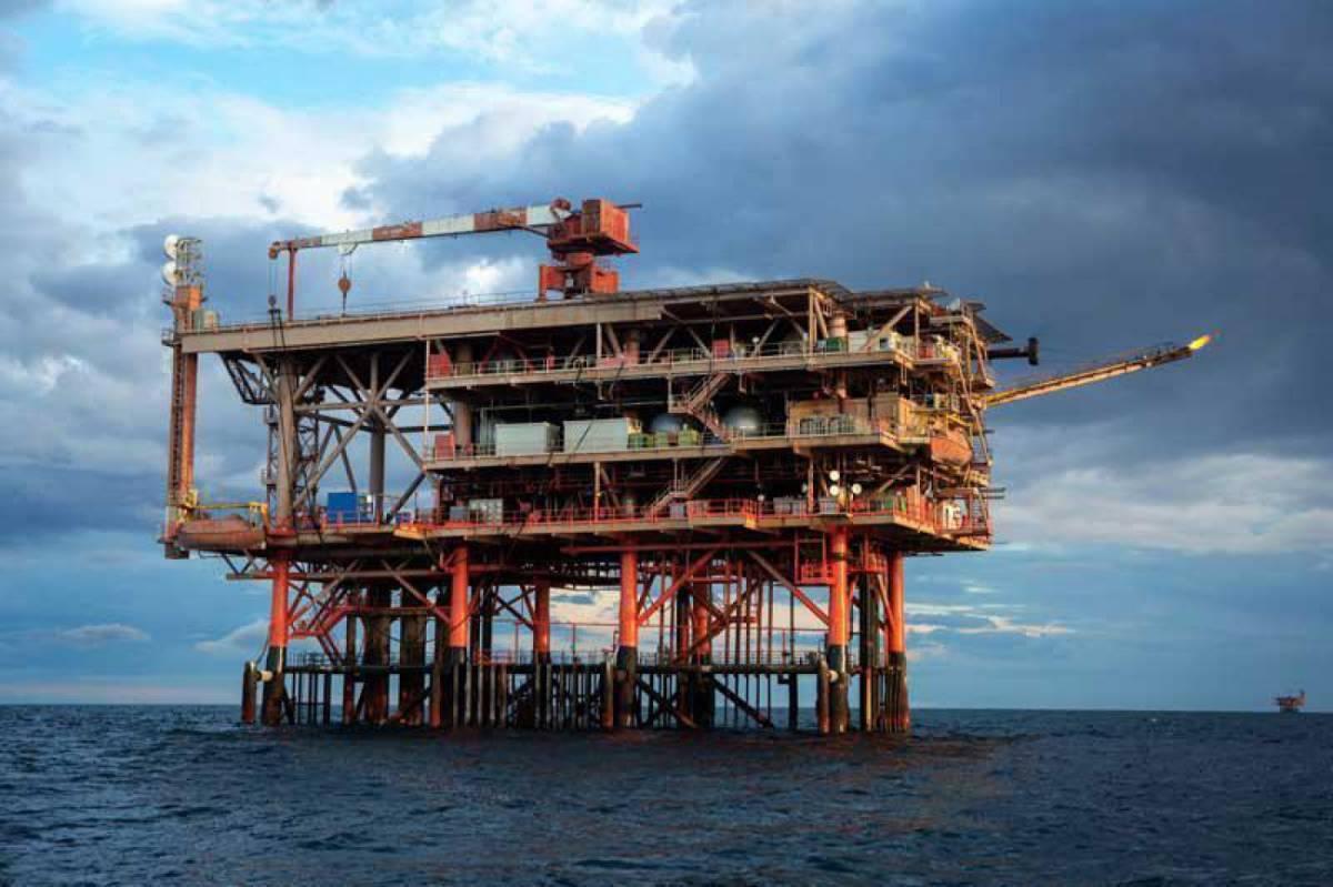 Trivelle, Shell fugge dall'Italia Grazie al Pd persi 2 miliardi