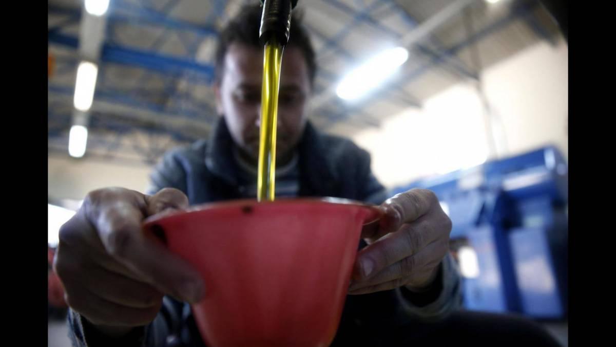 L'olio tunisino ci invade La rivolta degli agricoltori