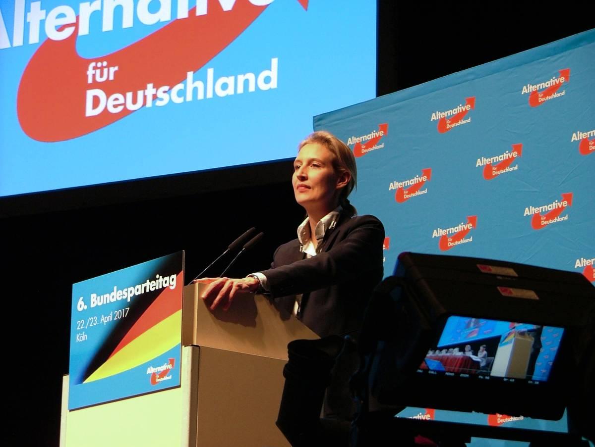 """""""Con arabi e rom sarà guerra civile"""": l'email della candidata dell'ultradestra tedesca"""