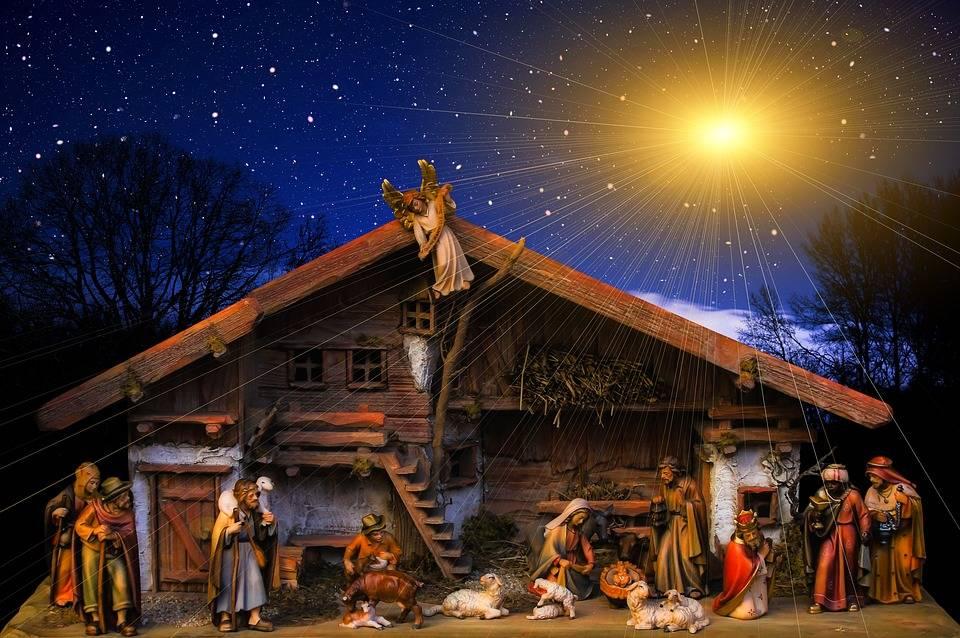 Alberi e presepi, battaglia per il Natale