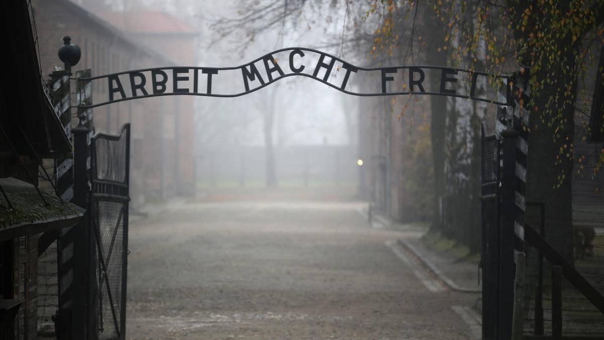 Carpi, stranieri oltraggiano monumento olocausto: l'ira dei cittadini