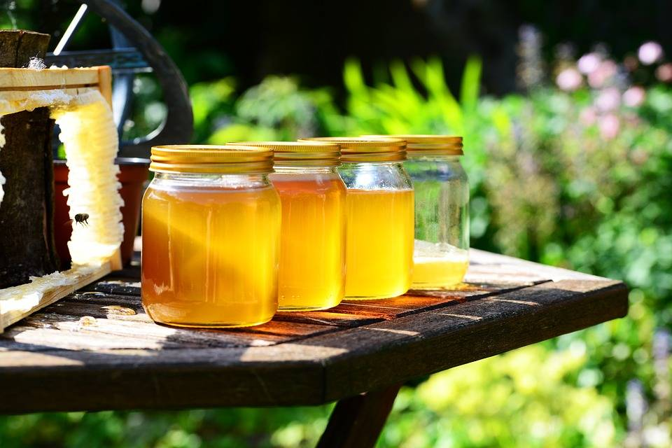Miele: naturale antinfiammatorio per l'inverno