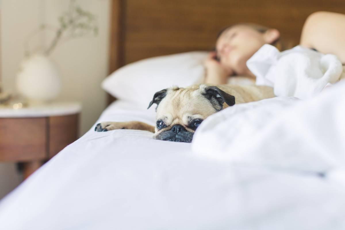Come arredare la camera da letto e dormire bene