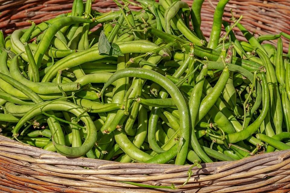 Prezzi record per le verdure a causa del freddo