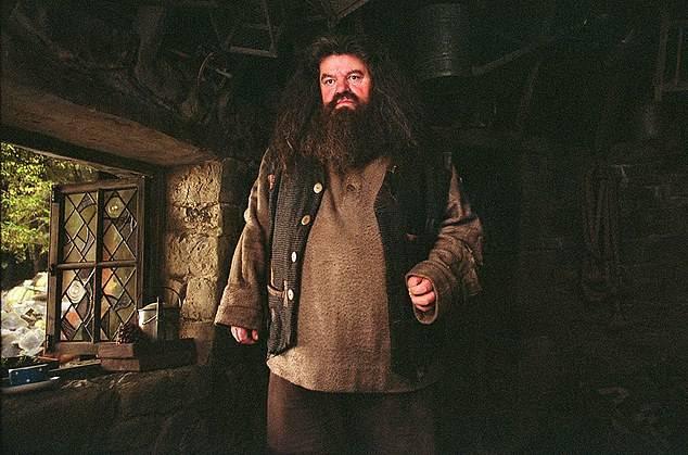 L'Hagrid di Harry Potter costretto su una sedia a rotelle