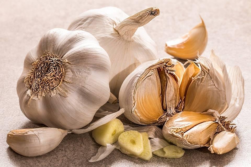 Soffritto con aglio e cipolla: alleato contro il tumore al seno