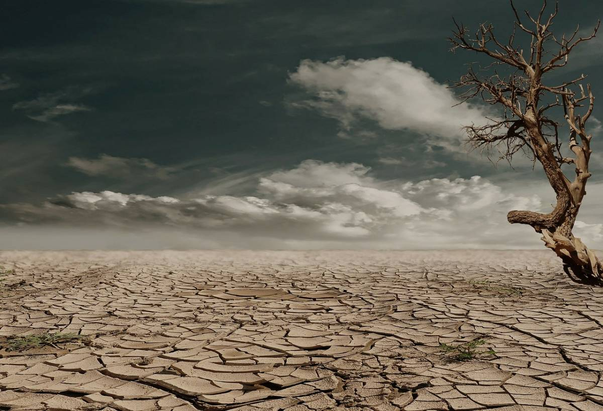Zimbawe piegato dalla siccità: la metà della popolazione rischia di morire di fame