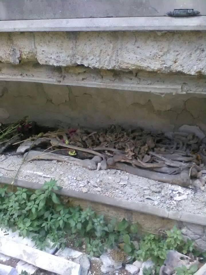 Lo scempio al cimitero: tra il degrado e l'incuria le ossa finiscono esposte