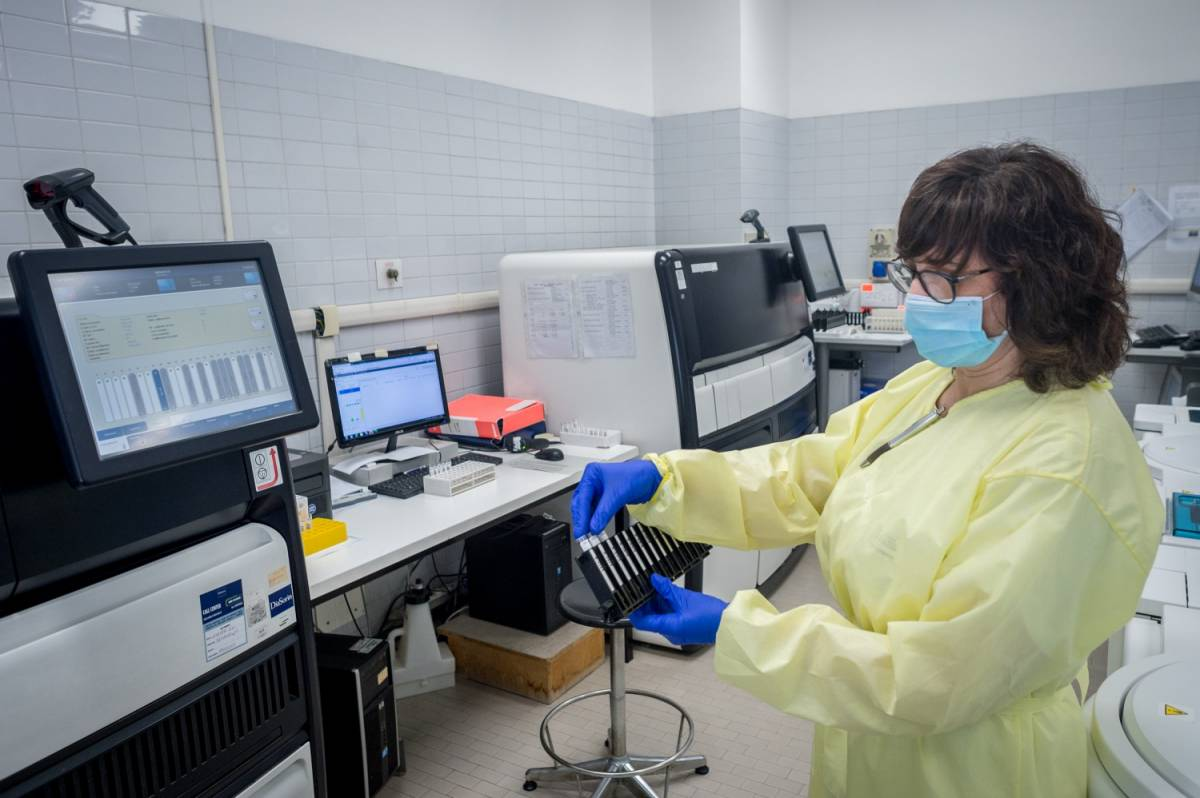 Quella faida tra scienziati sul virus: è indebolito ma è vietato dirlo