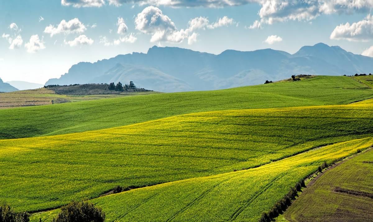 Firme a difesa degli agricoltori bocciati dal Comune
