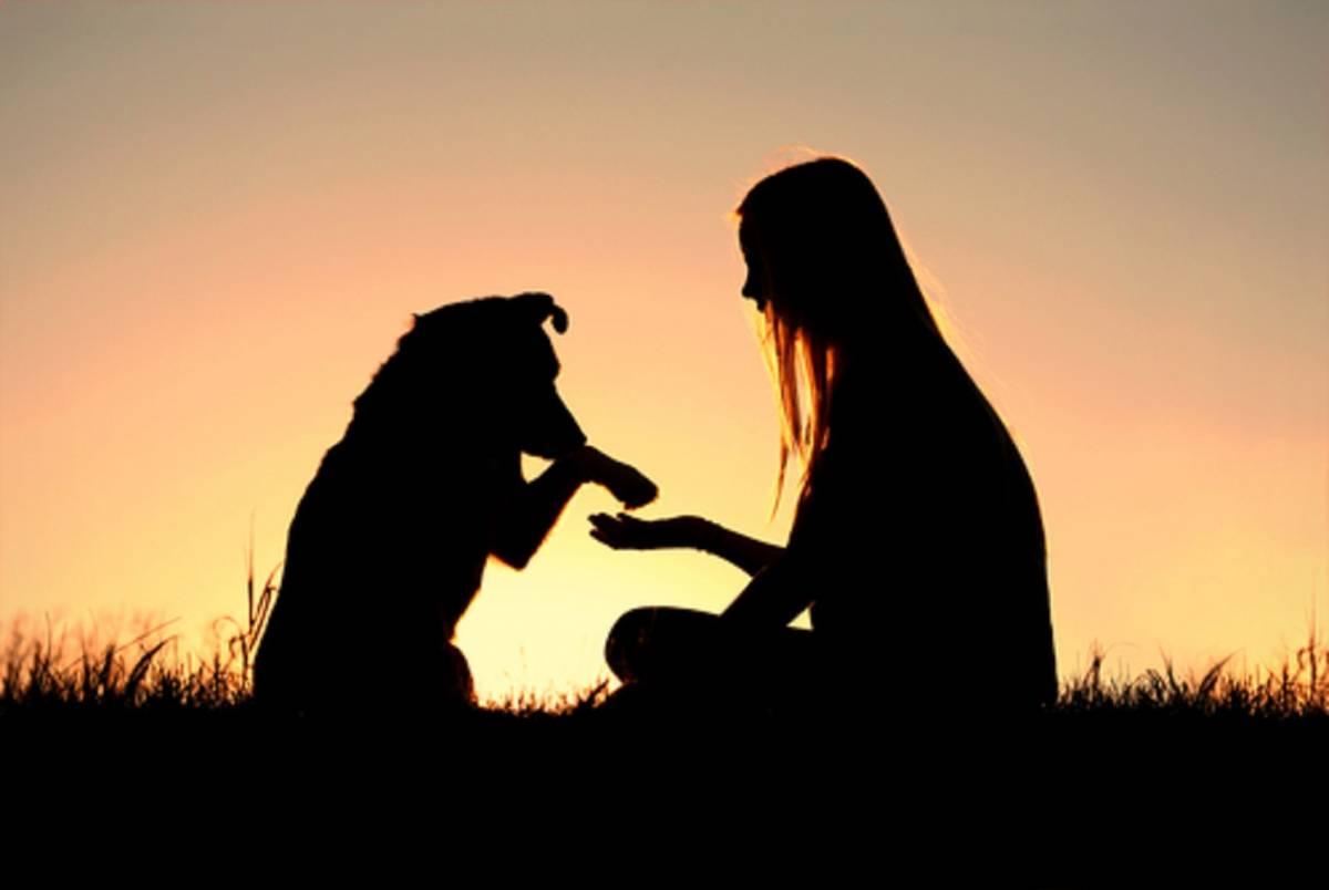 Uomo e cane, amici fedeli già  undicimila anni fa