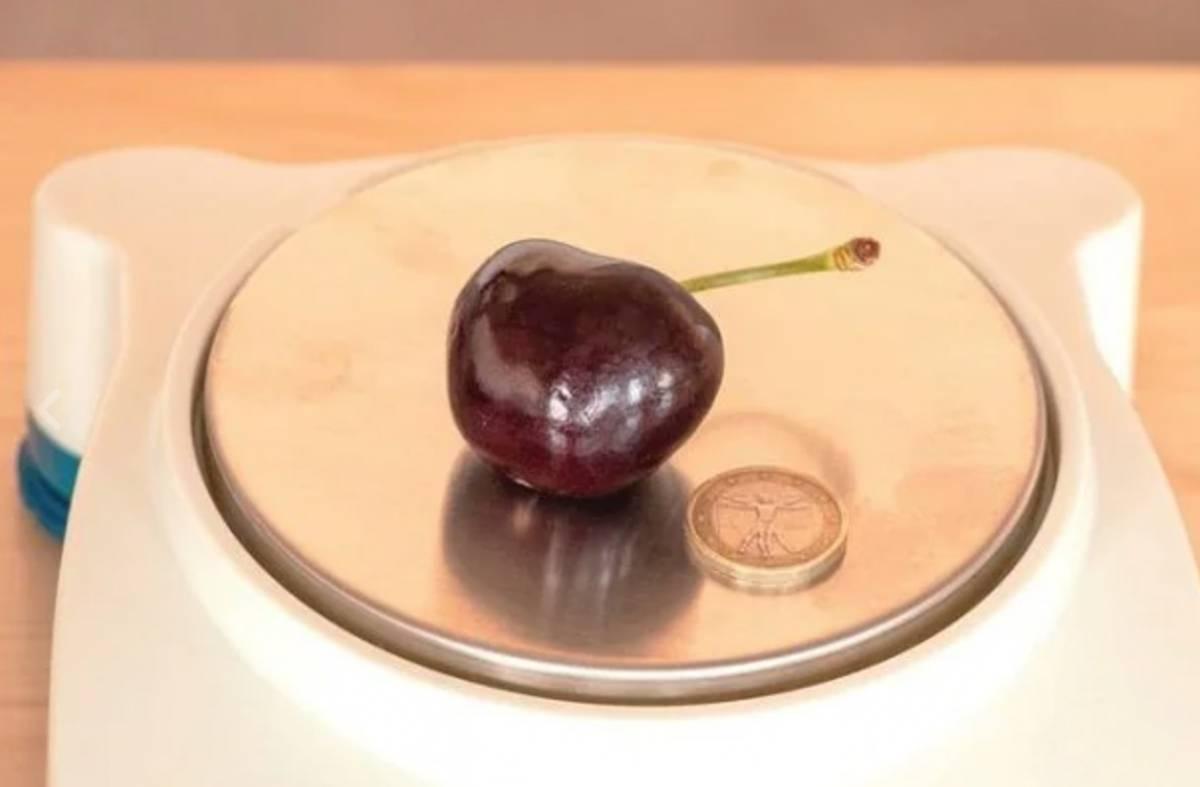 """La ciliegia dei record pesa 26 grammi: """"Nata a Ferrara dopo anni di ricerca"""""""