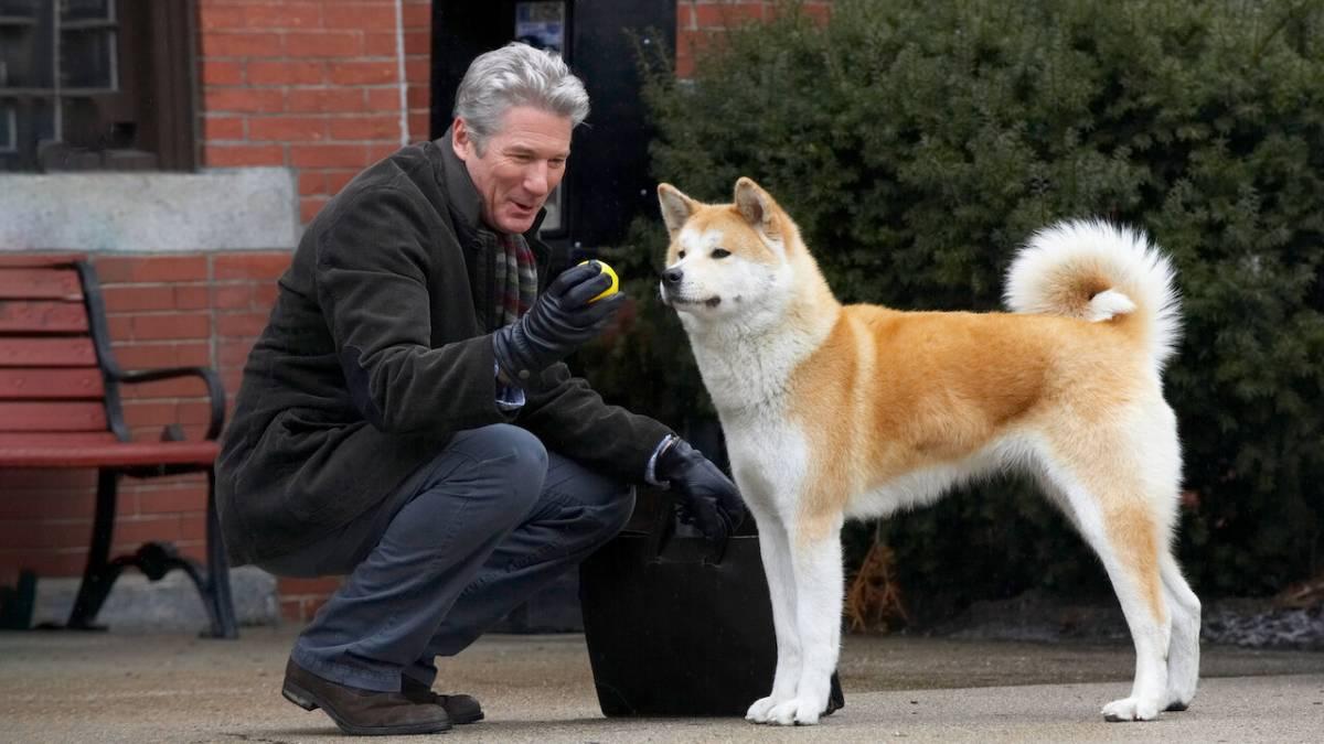 Hachiko, il cane che attese (davvero) fino alla morte il ritorno del suo padrone