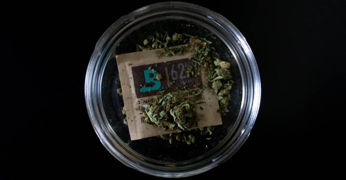 L'ultima di Grillo: tifa cannabis libera