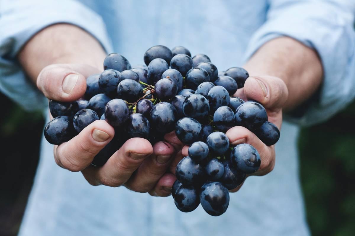 Pelle over 60, addio alle rughe con i cibi antiossidanti
