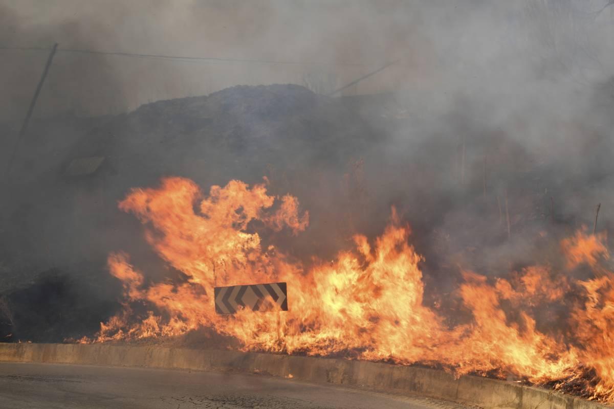 Brucia il Sud: 5 vittime. Inferno Calabria e Sicilia. Siracusa da record: 48,8°