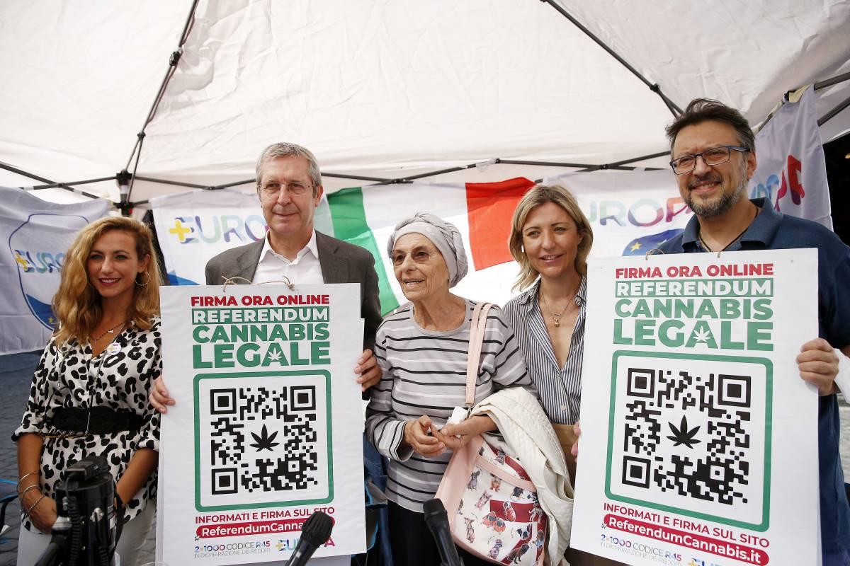 Già 500mila firme per legalizzare la cannabis. Ecco tutti i rischi del sì al referendum