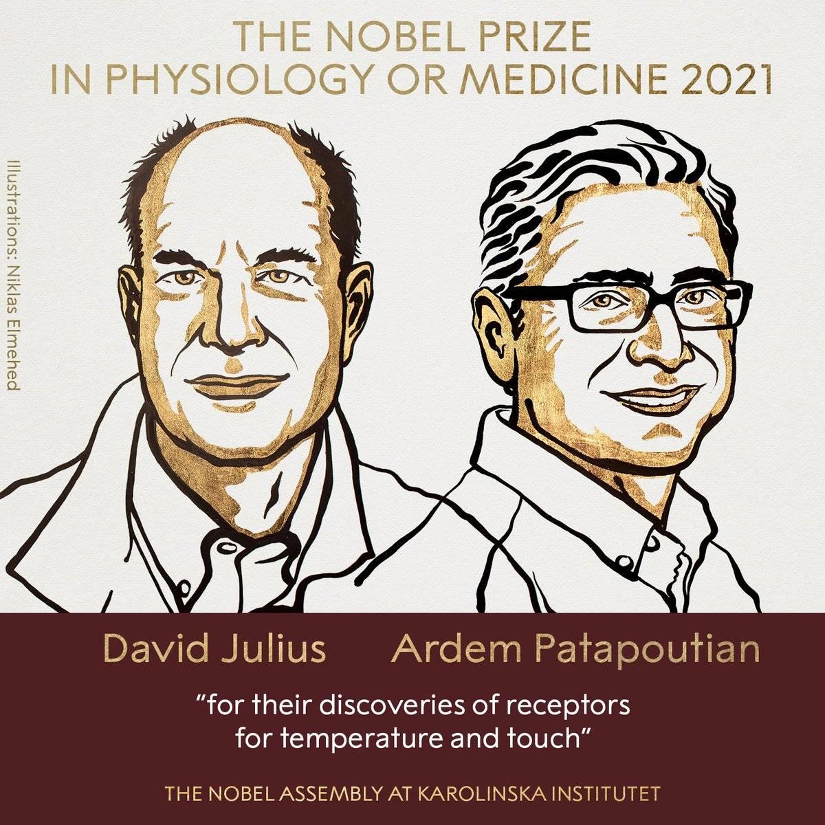 """Il Nobel per la Medicina a chi ha svelato i """"segreti"""" dei sensi"""