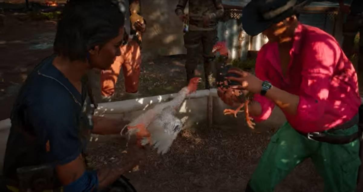I galli muoiono nel videogioco: esplode l'ira degli animalisti
