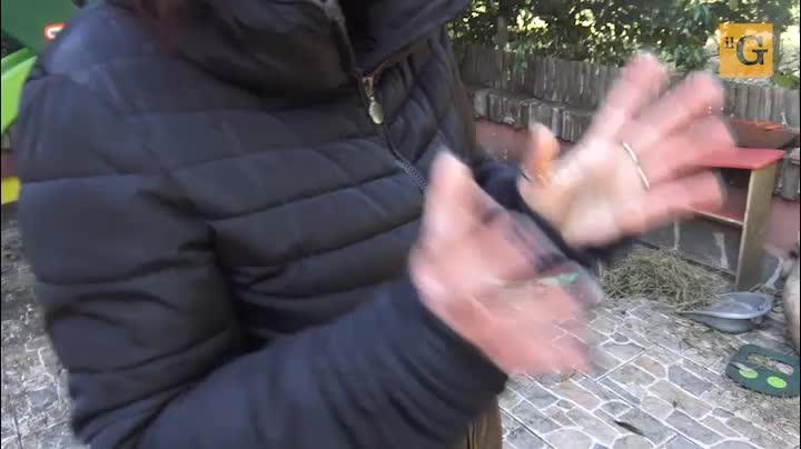 La Regione Lazio taglia sull'assistenza ai malati gravi: centinaia di famiglie in ginocchio