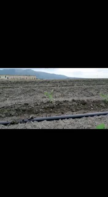 La meccanizzazione in agricoltura