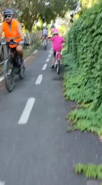 Questo è lo stato in cui versa una pista ciclabile di Roma