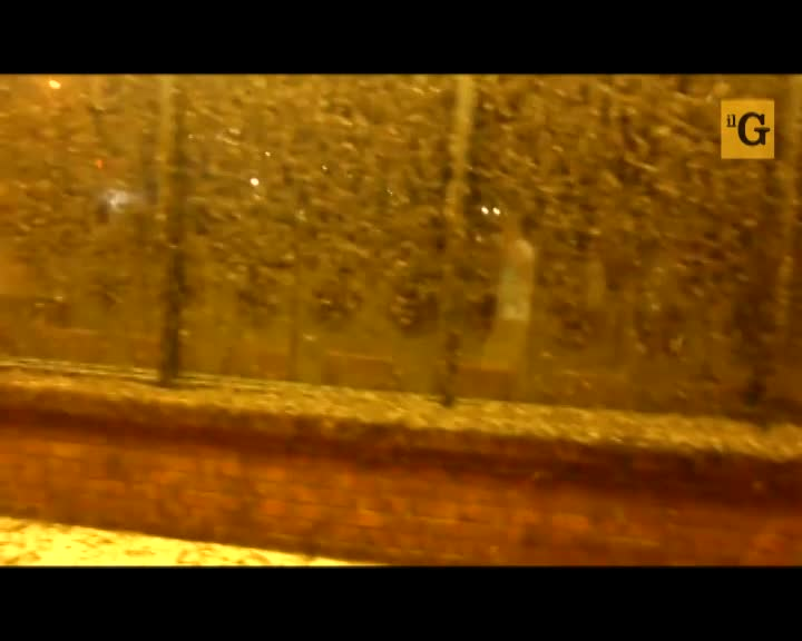 L'invasione delle efemere paralizza la cittadina