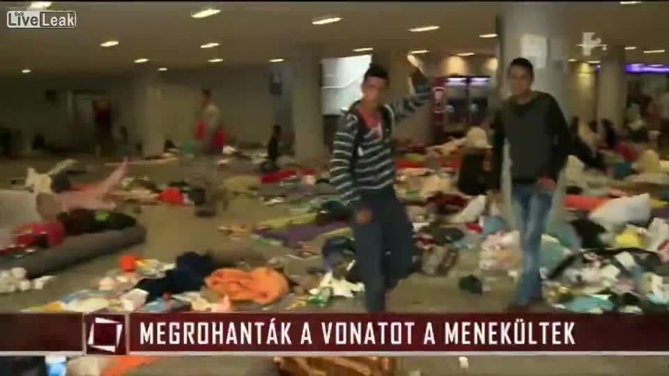 Ungheria, migrante choc fa gesto dei tagliagole