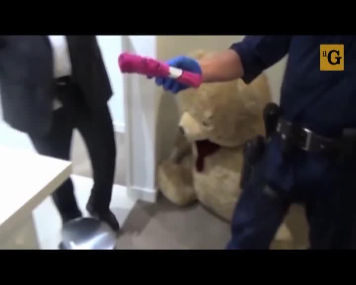 Australia, armi e denaro nascosti nell'orso di peluche