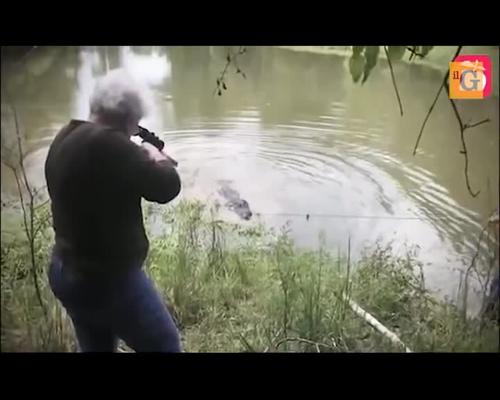 La nonnina fa secco l'alligatore