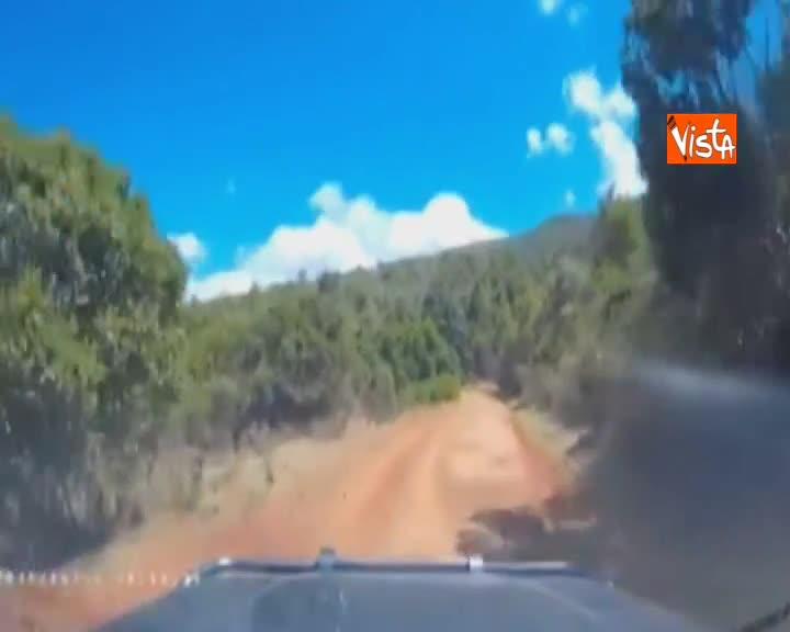 Paura in Kenya, coppia di turisti fugge per miracolo dai banditi armati di machete