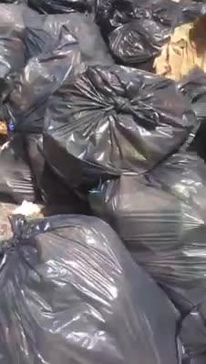 Roma, il cibo per i migranti gettato nell'immondizia